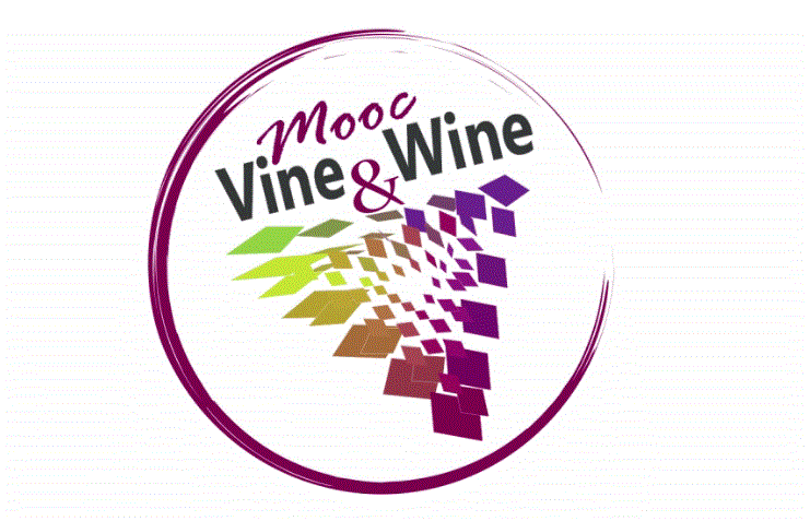 MOOC « Vine & Wine » : une introduction aux sciences de la vigne et du vin