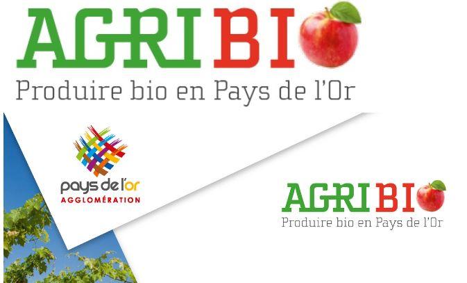 Pays de l'Or (Hérault) : De la bio pour sauver l'eau