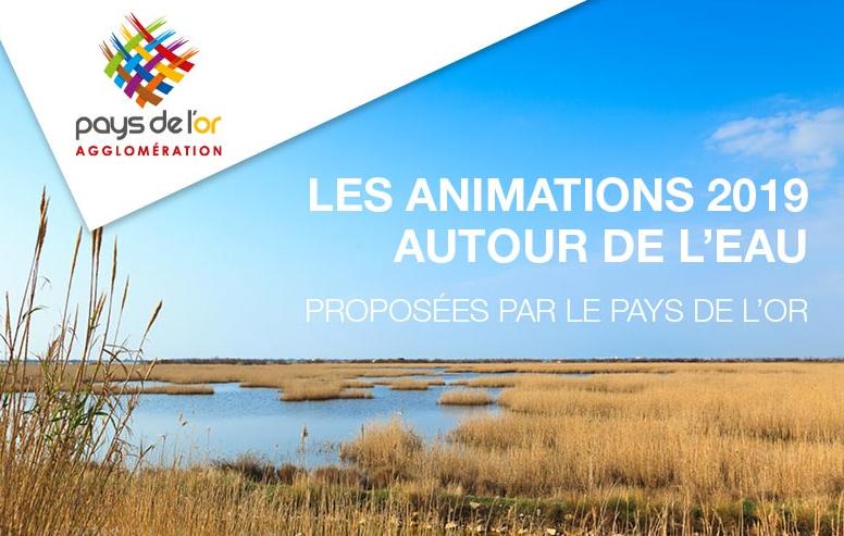 Pays de l'Or : un vaste programme d'animations pour tout savoir sur l'eau et les milieux aquatiques