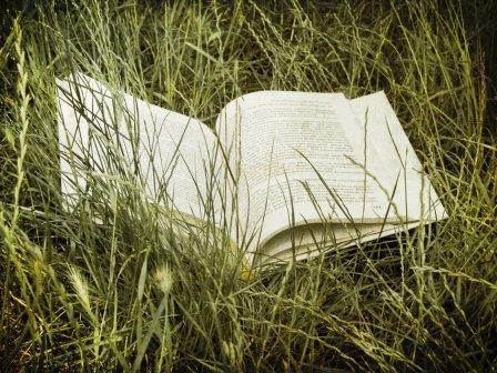 Lectures pour l'été : quoi de neuf sur la thématique «eau, agriculture et environnement» ?